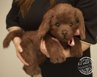 Tessy a realistic Labrador puppy,(is possible repeat to order) labrador, labrador puppy, puppy chocolate