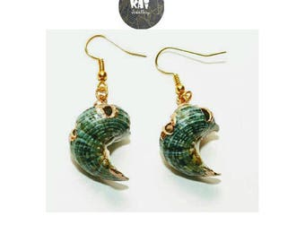 Green Turban Natural Shell   Ocean  Kawaii  Tahiti  Hawaiian  Surf  Beach  Summer Rose Gold Plated 14K Gold Plated  Gold Plated Earrings