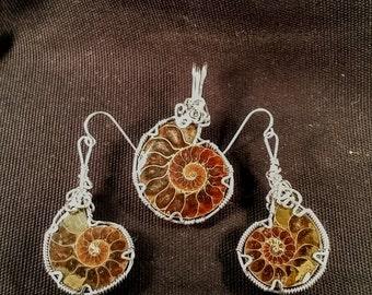 Ammonite set # 282