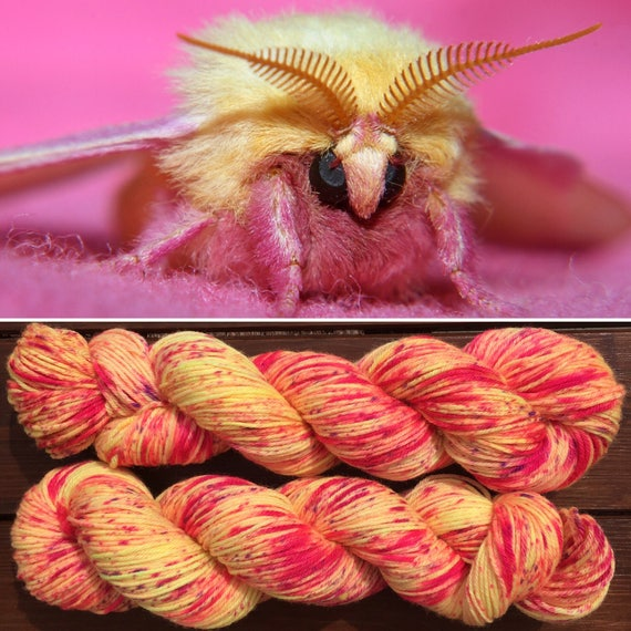 Rosy Maple Moth DK, speckle dyed pink yellow 75/25 merino nylon indie yarn