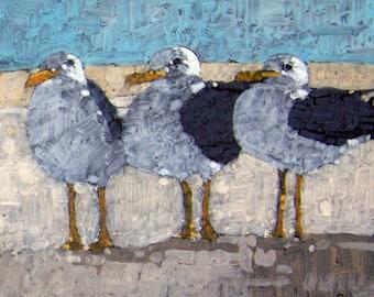 3 gulls
