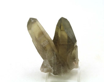Phantoms Natural Smoky Quartz Crystal Points Point Terminated Cluster - Very powerful and full of energy! Wild Intergrown -Very Gemmy 66.3gr