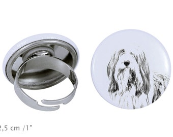 Ring with a dog - Border Collie