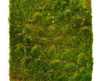 Moss Mat Artificial Grass Square Flat Fake Synthetic Grass 30cm x 30cm long