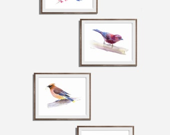 Bird Print Set Of 4, watercolor bird Painting, Original Watercolor Painting Print, Animal Wall Art
