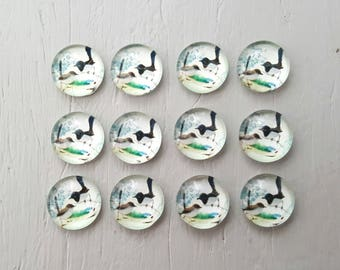 12 BIRDS Glass Cabochons 10mm round
