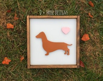 Personalized Weiner Dog Hand Painted 12 X 12 and Framed 3D Animal Art -- You Pick the Animal, Color, Breed