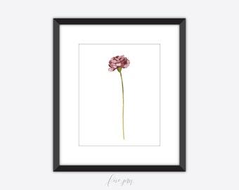 Carnation print, carnation art print, floral print, floral art print, floral printable, carnation art print, watercolor, watercolor print
