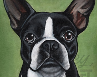 8x10 Boston Terrier Canvas Print