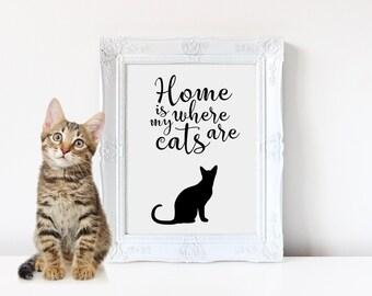 Etsy Com Market Crazy Cat Lady