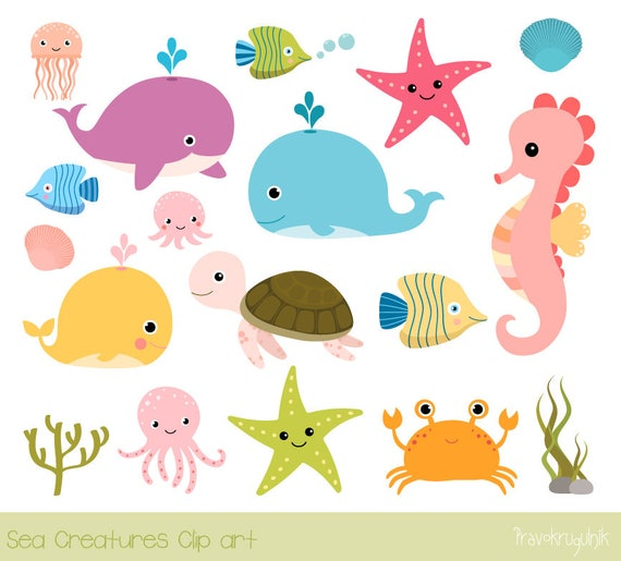 Sea animal clip art Under the sea clipart Seahorse whale