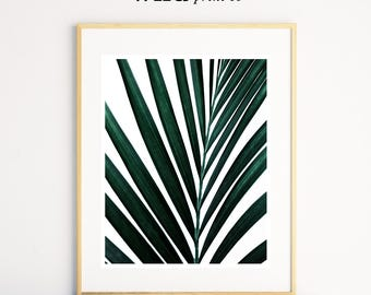 Tropical Leaf Wall Art Print, Green Leaf Photography, Tropical Wall Decor, Plant Prints, Modern Wall Art, Living Room Decor