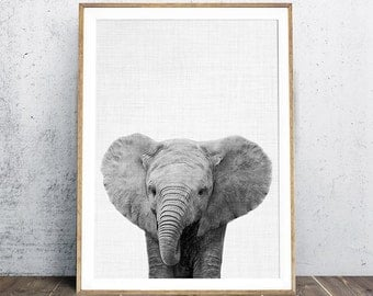 Elephant Print, Black And White Elephant Photo, Animal Nursery Decor, Nursery Wall Art, Animal Portraits, Digital Print, Instant Download