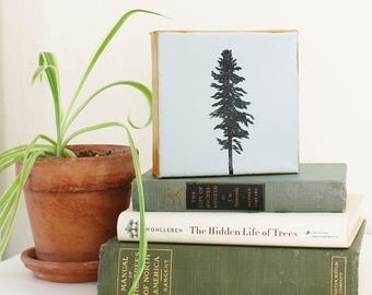 "Original Handpainted Tree Profiles on 5""x5"" Canvas: Choice of Loblolly Pine, Silver Fir, and Pitch Pine"