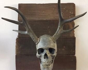 Gus - Cast Bronze Skull Wall Art Sculpture