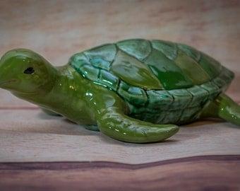 Tucker the Sea Turtle
