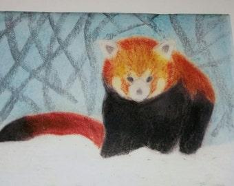 Red Panda Notebook/Sketchbook