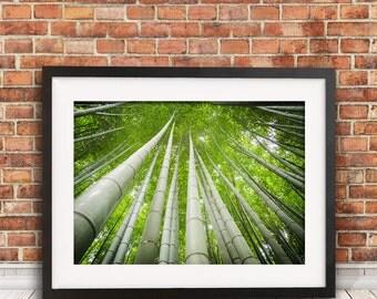 Arashiyama Bamboo Forest, travel photography, Japan art print, nature photography, landscape photography