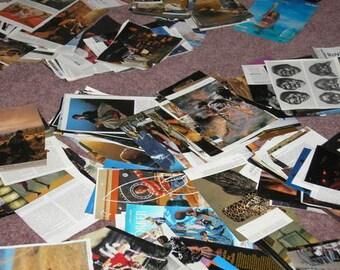 200 UNTRIMMED Magazine Images