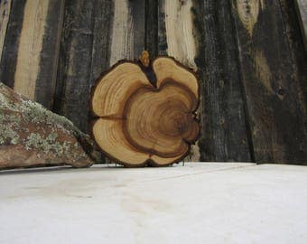 Gorgeous Juniper Tree Slice- Wall Hanging, Candle Stand, Centerpiece, Large Wood Slice, Clock Face (WS6050)