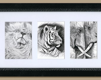 Lion, Tiger and Elephants, ATC cards. Does NOT come framed.