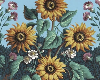 antique french botanical print wallpaper sunflowers illustration digital download