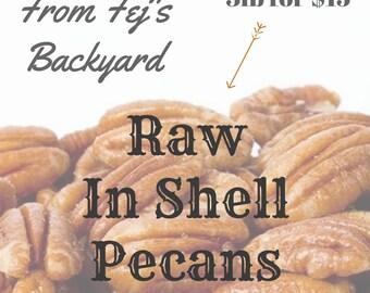 In Shell Pecans - 3lb Bag