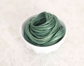 FOUR LEAF CLOVER hand-dyed embroidery floss Classic Colorworks cross stitch thread at thecottageneedle.com
