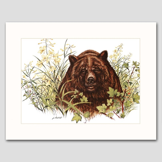 Grizzly Bear Art Print w/Mat -- Vintage Matted Artwork