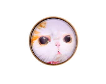 RING cat (2020B)