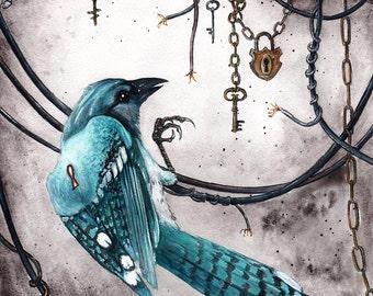 The Illusion of Choice: Fine Art Bluejay Bird Print