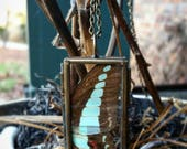 Real Preserved Blue Bottle Butterfly Wing Necklace