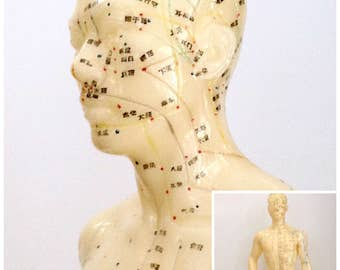 Vintage Rubber Acupuncture Model, Male Figure, Human Body Anatomical, Meridian & Extraordinary Points, Teaching Aide, Study Figure