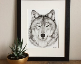 Wolf Charcoal Drawing GICLEE PRINT - Wolf Decor - Black and White Art - Wall Decor - Wildlife - Forest Woodland Animal - Realism