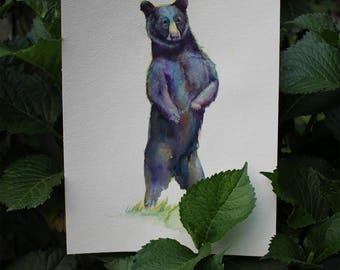 Mister Bear  (Print Only)
