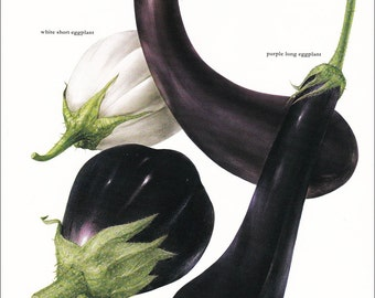eggplant kitchen accessories aubergine decor etsy 3534