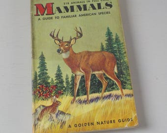 Vintage Golden Guide • Mammals american Species Pocket Nature Guide • Mammals Guide 1955