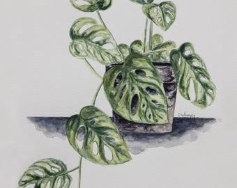 Living Green PRINT