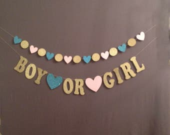 Gender Reveal, Baby Shower Decorations, Reveal Banner, Boy or Girl, Boy Girl Baby Shower, He or She, Pink or Blue Baby Shower Banner