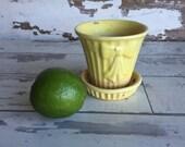 Vintage USA Pottery Planter - Tiny Yellow Shawnee Pot