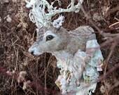 Winter Deer fairy tale Trophy
