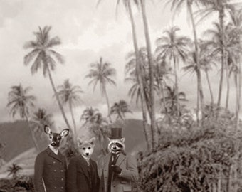 Men of the trees