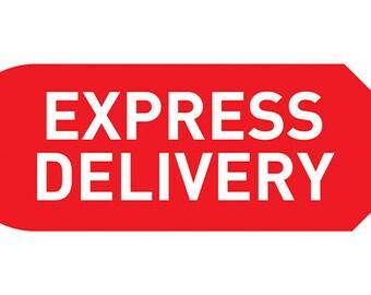 Express delivery USA, Canada, outside EU
