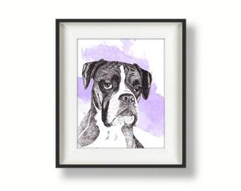 Boxer dog - boxer print - dog print - print of original pen drawing by Tracy Stone