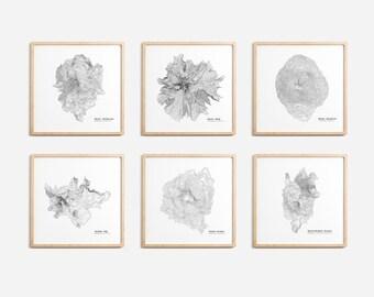 Oregon Mountains Topographic Map Art Print Set -  Hood Bachelor Three Sisters Broken Top Jefferson
