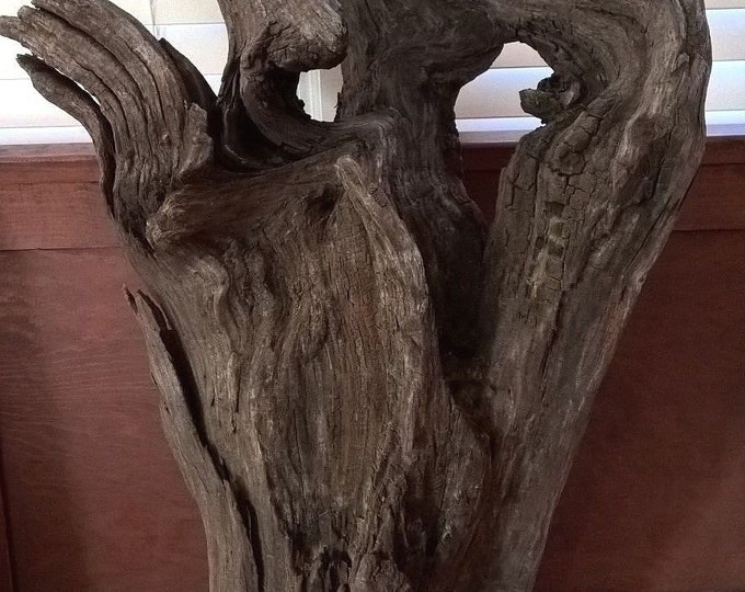 Large Driftwood Stump Log Rustic Home Decor. Natural Drift Wood Sculpture 597