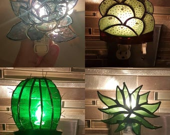 Succulent Nightlights