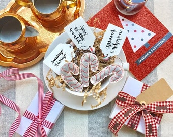 Custom Made to Order Candy Cane Tea Bags. Choose Your Teas. Personalize the Tag. Perfect for the Holidays and Tea Lovers. A Festive Gift!