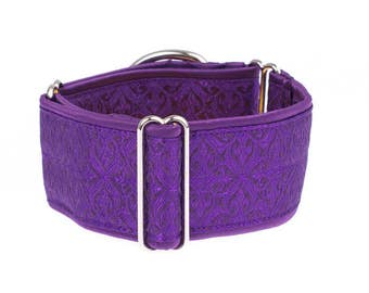 1,5 inch Martingale collar,  martingale dog collar, whippet,purple, greyhound collar, martingale collar,collars,dogs collars,martingales