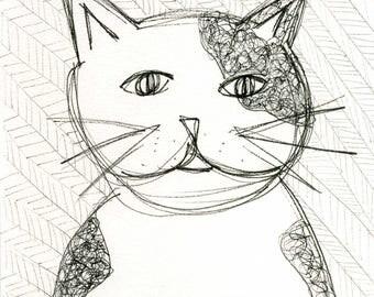 Original 6 x 9 pen drawing of a cat